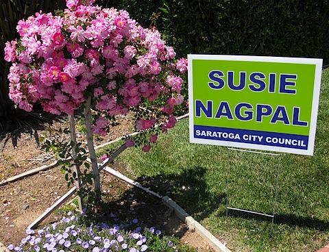 Susie Nagpal IMG_2742